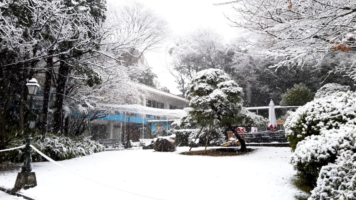 institut sous la neige